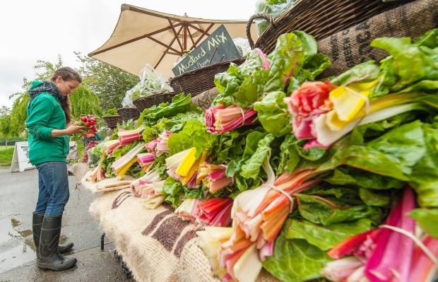 What's at Market in May?