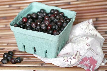 Granola and Milk with Saskatoon Berries